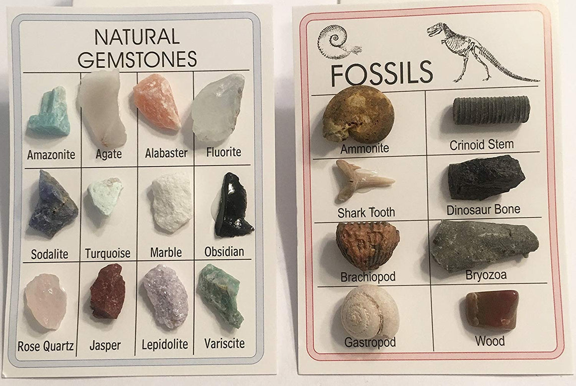 Fossil & Mineral ID Charts - 12 Minerals and 8 Fossils - Great for Science Fairs - dinosaursrocksuperstore