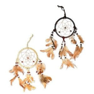 Dream Catcher - dinosaursrocksuperstore