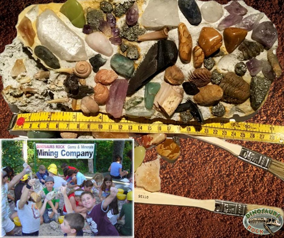 DINOSAURS ROCK Mega Gemstone & Fossil Dig Excavation Kit Over 50 Real Specimens - dinosaursrocksuperstore