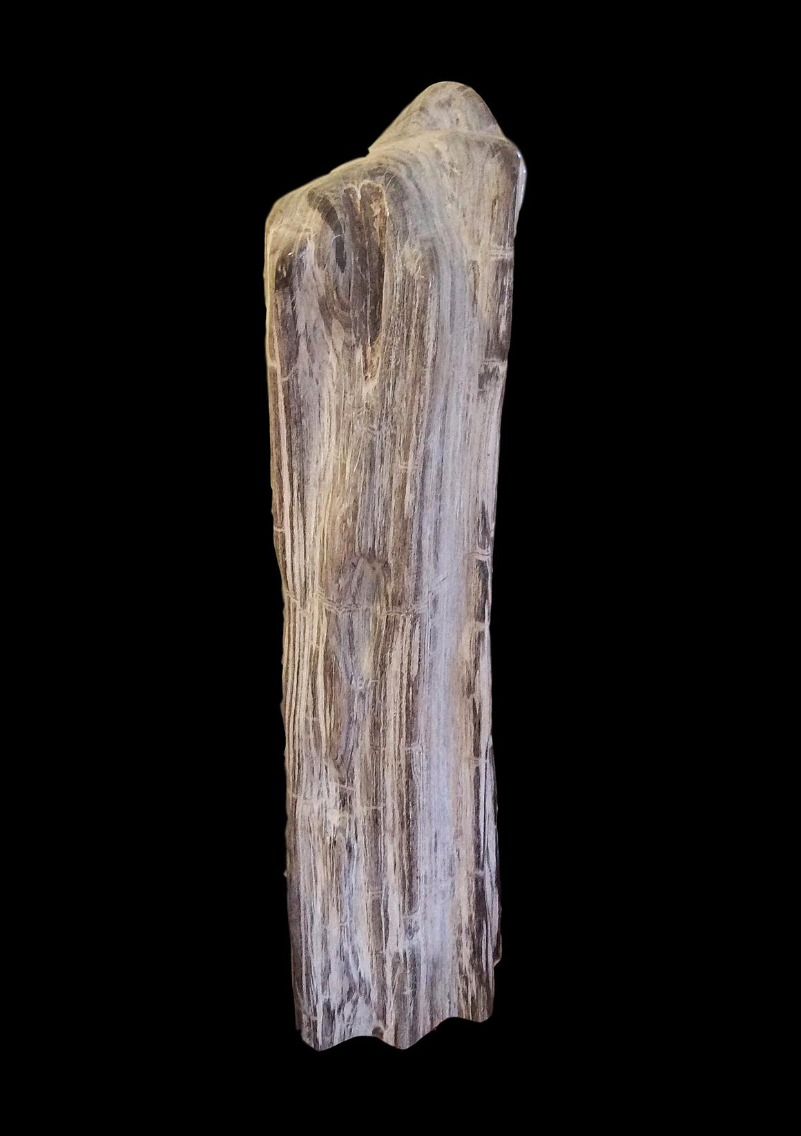 "Museum Specimen Petrified Wood - 42"" Tall - Madagascar - dinosaursrocksuperstore"