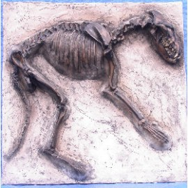 Dire Wolf Skeleton Replica Plaque - dinosaursrocksuperstore