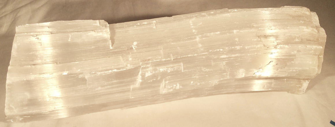 "Selenite Crystal Mineral Display Specimen - 17"" long - dinosaursrocksuperstore"