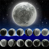 LED Wall Moon Phases Changing Lamp