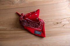 Hanky Scarf - Red BABY Paisley