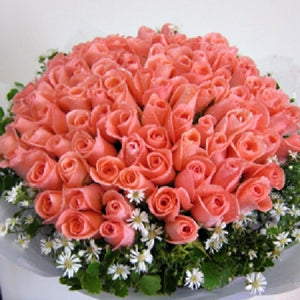 48 Pink Roses