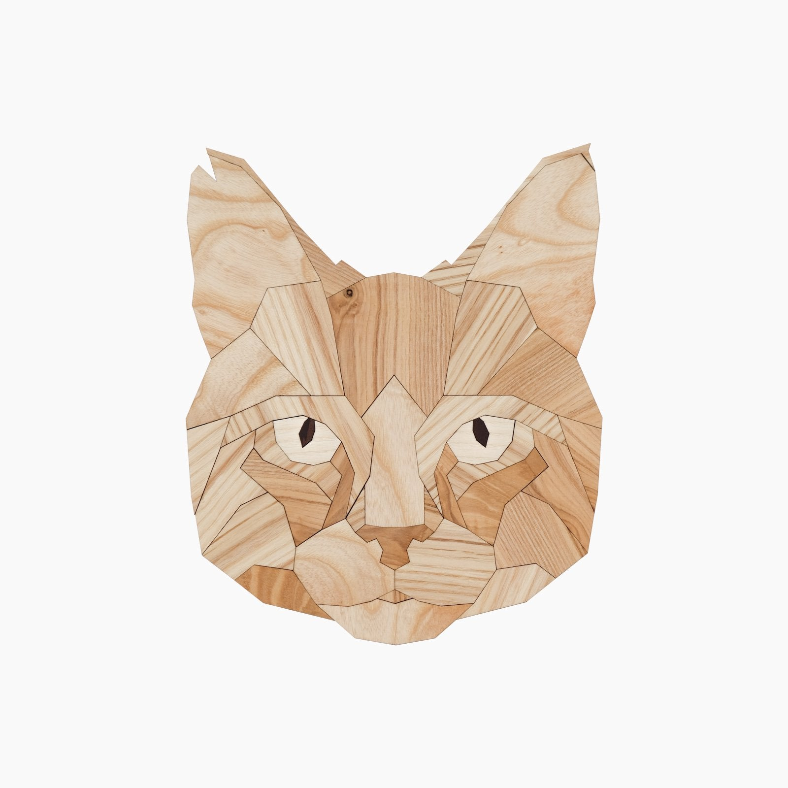 latete design animal dier wood hout poes cat chaton