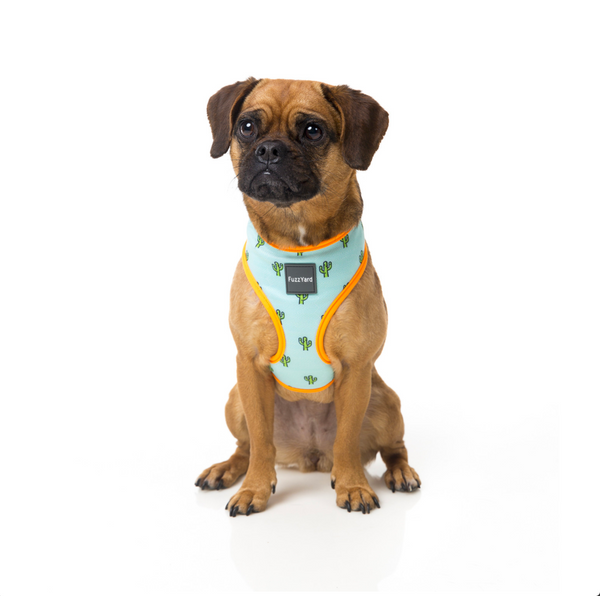 FUZZYARD | TUCSON DOG HARNESS