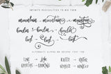 Designers font Bundle 11 Fonts