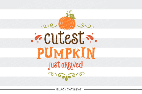 Cutest pumpkin just arrived -  SVG file Cutting File Clipart in Svg, Eps, Dxf, Png for Cricut & Silhouette - BlackCatsSVG