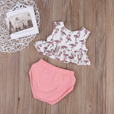 Flamingo Bloomer 2-Piece Set - SimplyBaby.co - 2-Piece Funny baby clothes