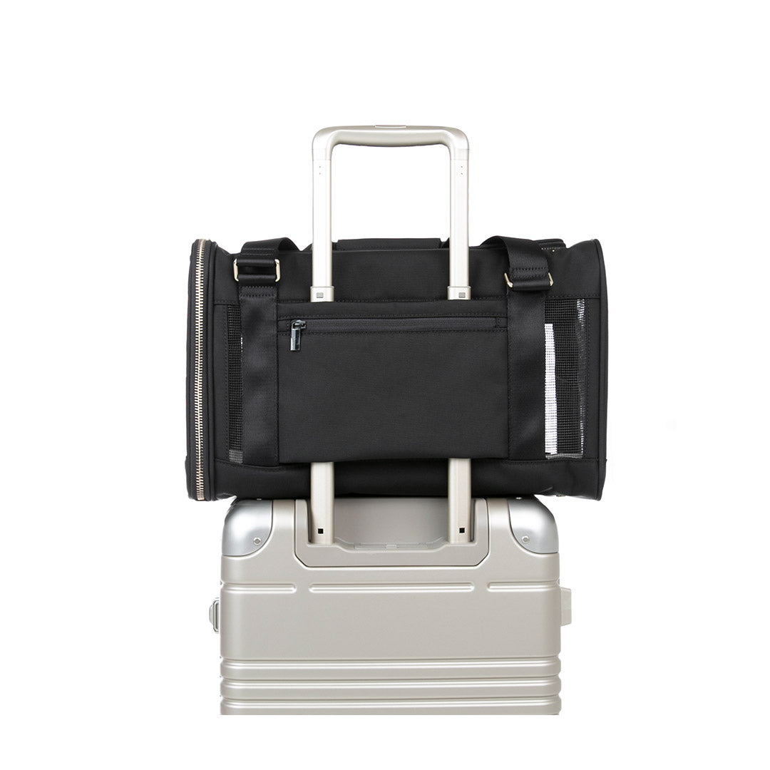 Large Pet carrier back facing view place on top of a frame carry-on
