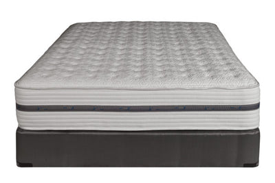 Paramount Sleep Back Performance™ PS Tidal FX Plush Queen Mattress and Box Spring - Wayne's Outlet