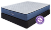 "Spring Air Back Supporter™ Royale Anne Cushion Firm 13.5"" Dual-Sided Tight Top Queen Mattress Set - Wayne's Outlet"