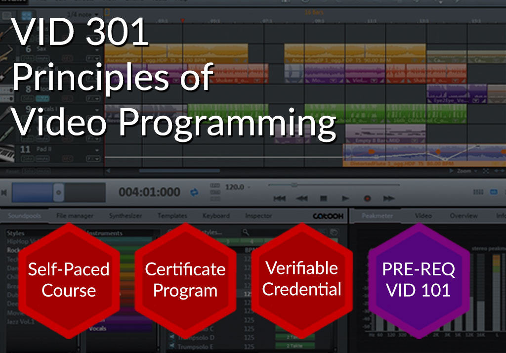 VID 301  |  Principles of Video Programming