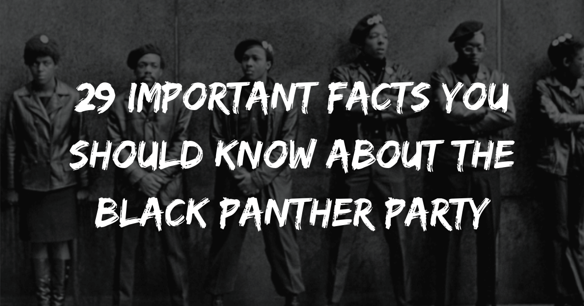 29 Important Facts You Should Know About the Black Panther Party