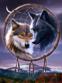 2 Wolves on dreamcatcher diamond painting - Gift-Frog
