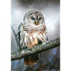 Animal owl diamond painting - Gift-Frog