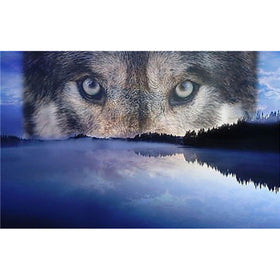 Diamond Painting animal wolf eyes - Gift-Frog