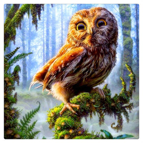 Diamond Painting Owl (Various sizes to choose from) - Gift-Frog