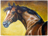 Canvas Art - Freestyle Saddlery