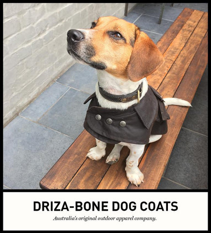 Dog DrizaBone Jacket - Freestyle Saddlery