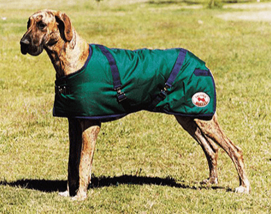 Dog coat Thermomaster Supreme - Freestyle Saddlery