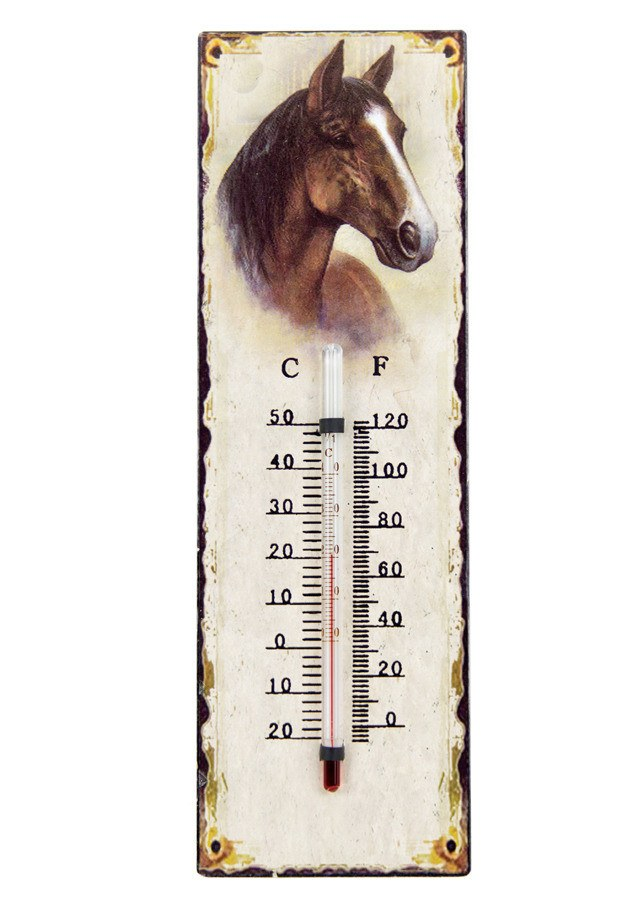 Wall thermometer - Freestyle Saddlery