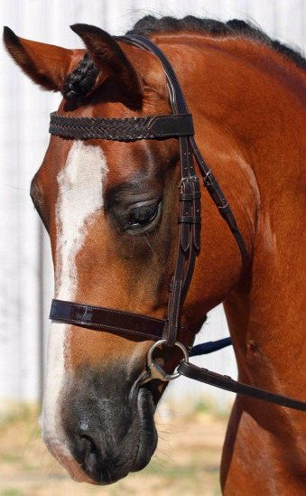 Flexi Fit Bridle English Gel Havana Brown - Freestyle Saddlery