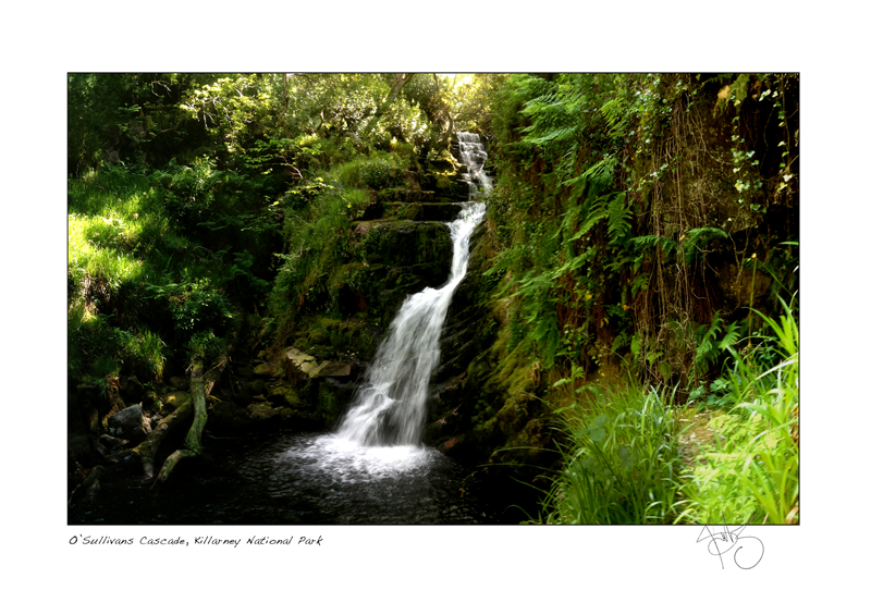 38. O'Sullivans Cascade, Killarney National Park
