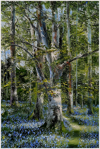 MARK ELDRED - Birch And Bluebells, Killarney