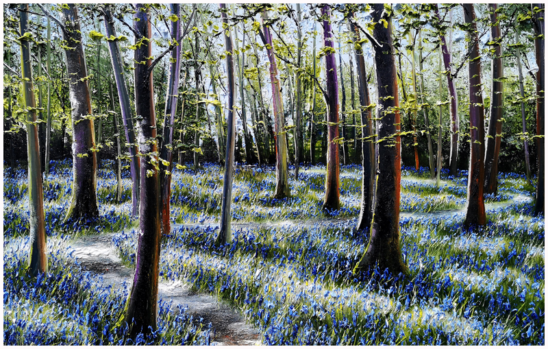 MARK ELDRED - Dappled Light, Muckross Bluebells