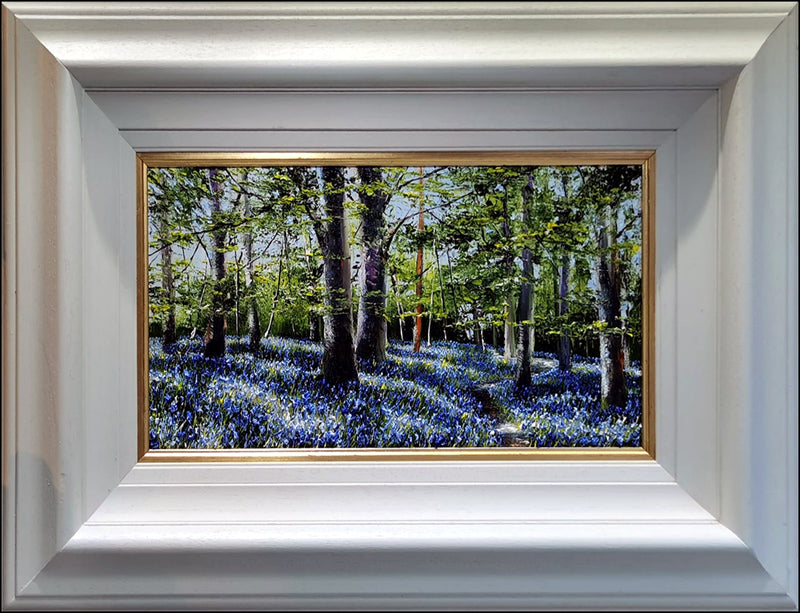 MARK ELDRED - Early evening Bluebell woods, Killarney