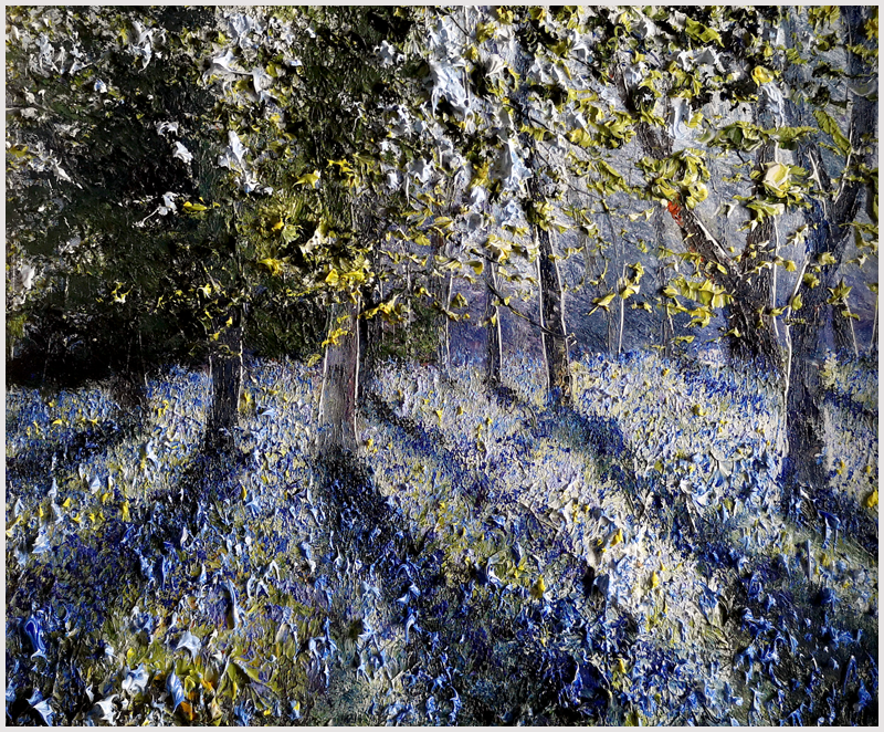 MARK ELDRED - Bluebell light Killarney Woodlands
