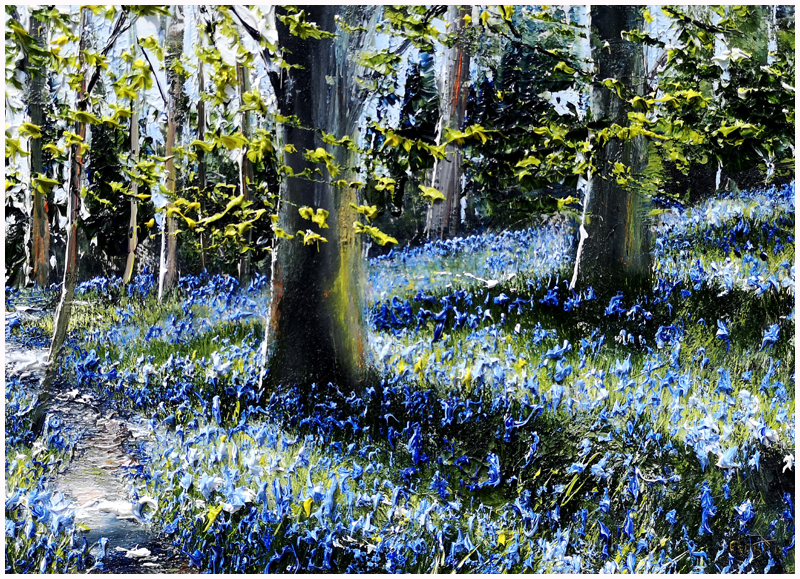 MARK ELDRED - Bluebell Light