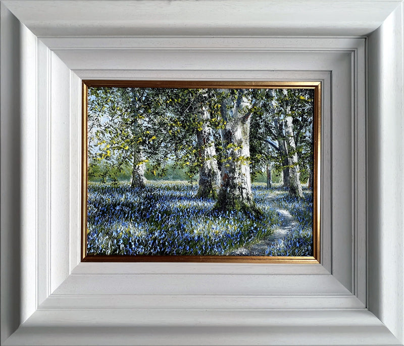 MARK ELDRED - Bluebells under the Beeches Killarney