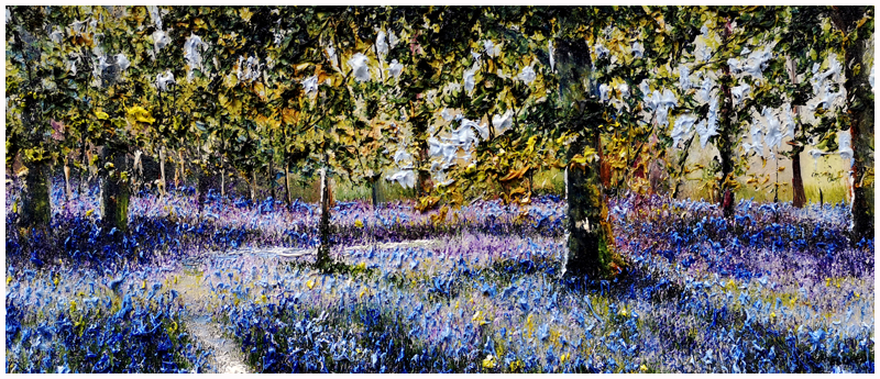 MARK ELDRED - Killarney Bluebell Woods