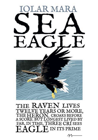 The Sea Eagle - Irish Birds
