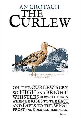 The Curlew Birds of Ireland Roger O'Reilly Ireland poster Store