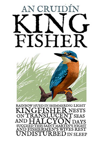Kingfisher - Irish Birds