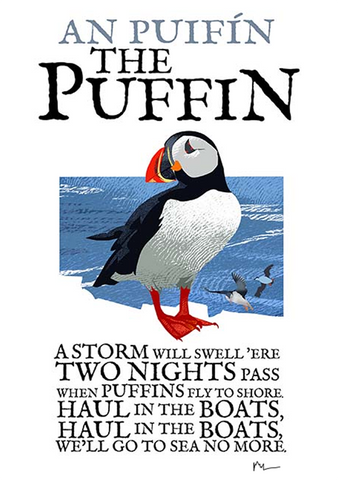 Puffin Skellig Michael Birds of Ireland Roger O'Reilly Ireland poster Store