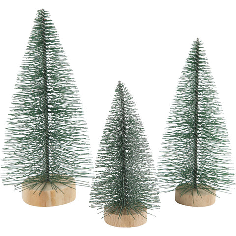 Christmas Spruce Trees