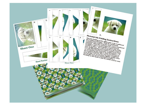 Labrador Puppy Iris Folding Kit