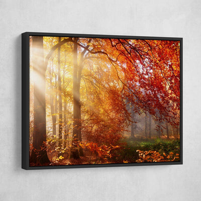 Autumn Forest Sun Rays - Amazing Canvas Prints