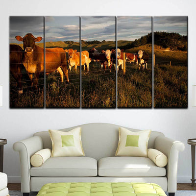 Curious Cattle - Amazing Canvas Prints
