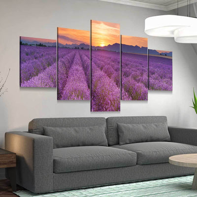 Lavender Fields Sunrise - Amazing Canvas Prints