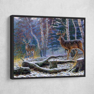 Who's King Buck - Amazing Canvas Prints