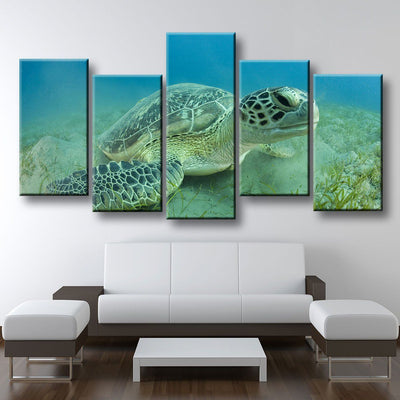 Young Sea Turtle - Amazing Canvas Prints