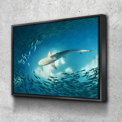 Shark On The Hunt - Amazing Canvas Prints