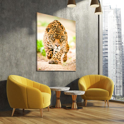Sneaking Jaguar - Amazing Canvas Prints