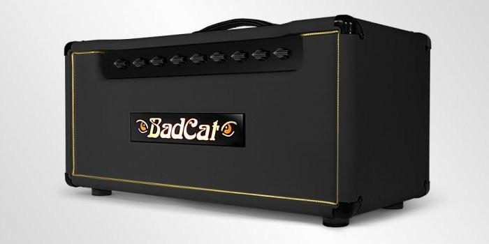 Bad Cat Amps Classic Cat 20R Head